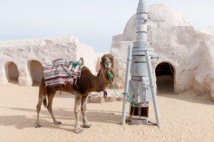 Anantara Tozeur Resort Hotel in Tunesien