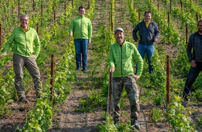 Sommeliers und VDP.Weingut Heitlinger starten gemeinsames Weinprojekt